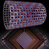 2048退火量子计算机首次演示拓扑相变 量子模拟...