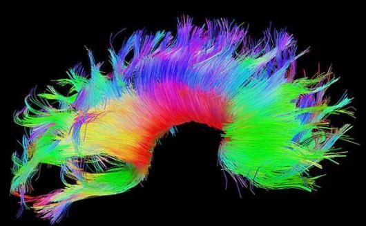 识别技术新进展:不仅可用于生物识别,还将用于精神...