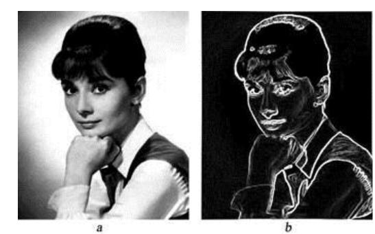 MATLAB的Sobel图像边缘灰度值检测算法的...