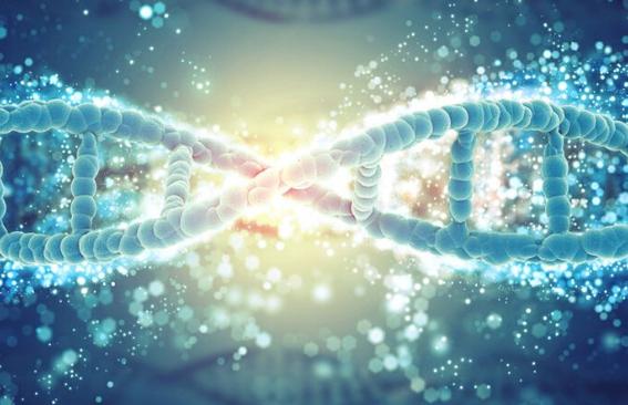 分子诊断领域发展速度快,分子诊断企业动作不断