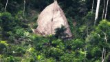 巴西探险队无人机拍到亚马逊边远部落