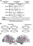 人际大脑同步在社会互动学习中的作用机制