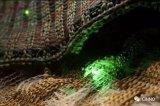 最新黑科技 将光电二极管制成可清洗柔软织物