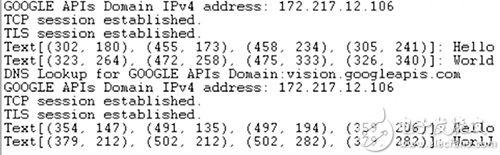 GCP 视觉 API 响应产生的终端输出图片