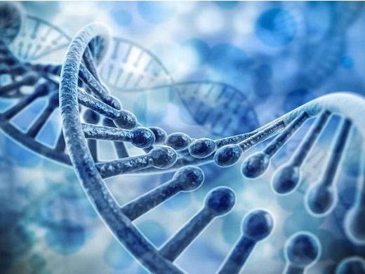 基因检测作为精准医学的重要一环,在近几年也得到了...