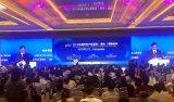 中國新能源汽車業近年來快速發展令世界矚目