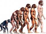 利用AI和机器学习技术,寻找人类最早的共同祖先
