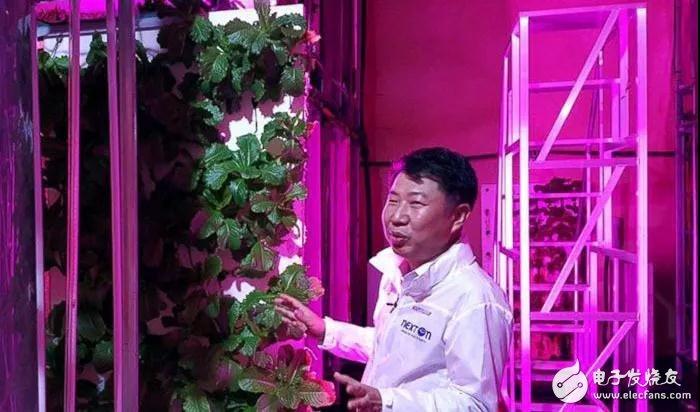 韩国将一公路隧道成功改造成了大型室内农场