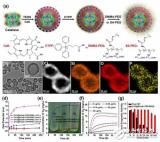 智能納米粒子系統可改進癌癥PDT治療