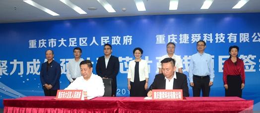 聚力成外延片和芯片产线项目落户重庆市大足区 总投资约50亿元