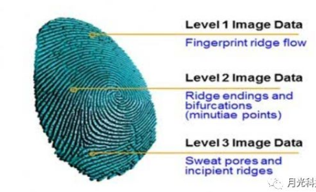 三星將在S10上使用高通第三代超聲波屏下指紋識別...