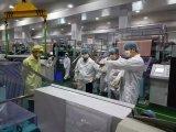 諾德股份聯合銅箔通過LG化學審核并開始小批量供貨