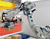 机器人产业发展:想提质?先降温!