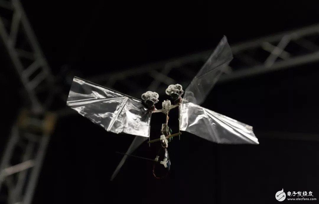 研究人员开发出果蝇飞行机器人,可以悬停在半空或执行各种极端动作