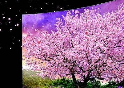 戴尔DELL177FB液晶显示器黑屏的原因及维修方法