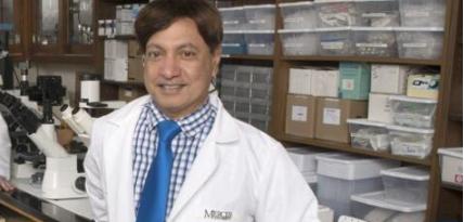利用微针新技术开发出了一种创新型淋病疫苗候选药物
