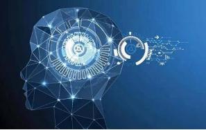 新研发成功的人工智能技术尤其适用于活细胞的观测