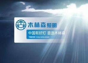 探讨木林森在中国及全球市场的发展战略