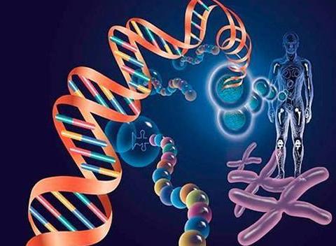 基因检测行业处于高速发展阶段,联合治疗将成为未来...