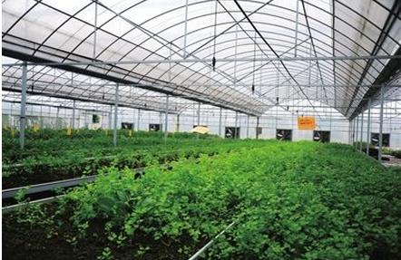 温湿度传感器在农业上的运用