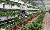 農業物聯網發展突飛猛進,產品追溯體系帶來了很多好處