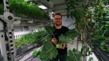 德国研究人员采用LED照明在极地试种蔬菜