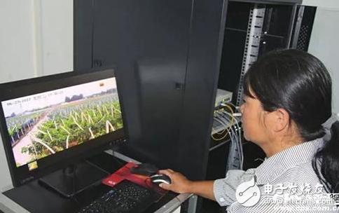 AI+IOT為農業賦能,促進農村經濟增長