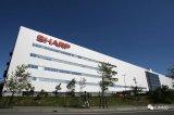 夏普正式宣布将进入OLED市场