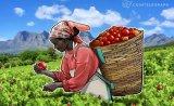 区块链如何改进食品行业