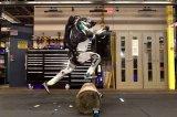 波士顿动力机器人逆天