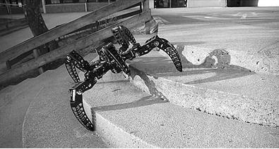 利用3D打印机制成的捕鸟蛛六足机器人能借灵活的肢...