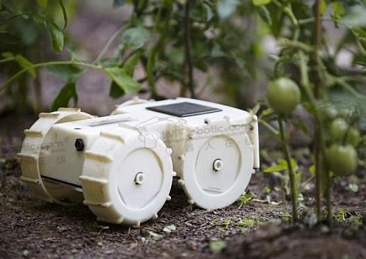 自动清理草坪机器人Tertill:可自动除草,更加效率方便