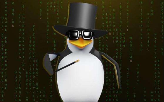linux mail命令的的使用方法详细资料解分