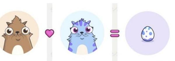 数字猫将会欣起以太坊的下一场变革