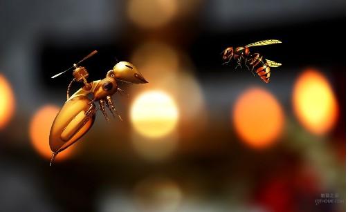 物联网可以从蜜蜂身上学到什么