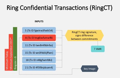 隐私币的工作原理解析