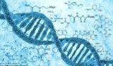 若DTC基因检测达2%临界点 个人身份或将无所遁...