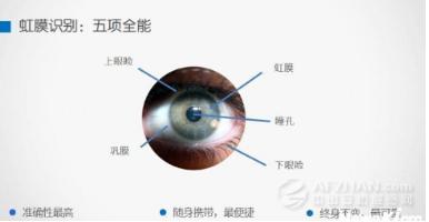 虹膜识别技术迎来了进入大众化领域的契机
