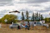 北美完成首個城市超視距無人機系統項目
