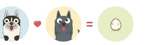 什么是加密狗,有什么特点