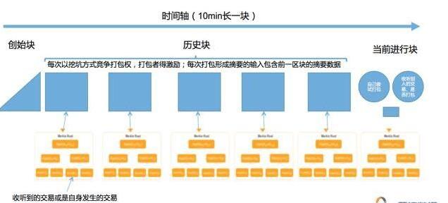 区块链中的三种典型链的对比分析