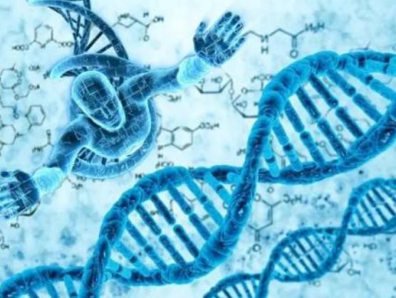 基因检测市场呈井喷式发展,产业整合将成为未来的必然趋势