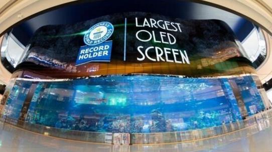 一文了解OLED屏幕