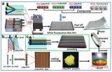 基于微流体纺丝long88.vip龙8国际原位构筑有序荧光纤维在白光LE...
