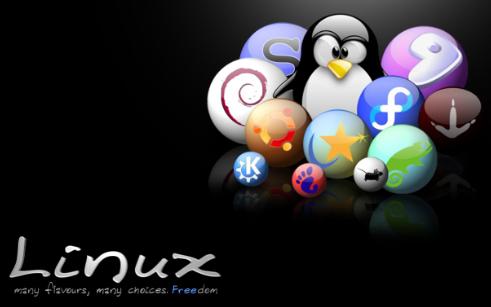 如何使用wingrub硬盘安装linux的详细教程免费下载