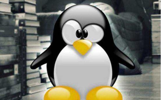 Linux基础教程之linux wget下载进度条变成多行显示如何解决