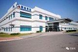 重庆广达Apple Watch工厂遭苹果调查