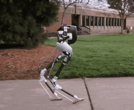 Agility Robotics研发出的一款双足机器人 可适应各种路面