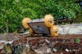 能轻松跳跃10米的跳蚤机器人你见过吗