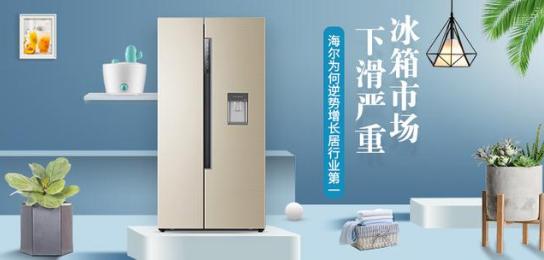 海尔握稳消费者需求 逆势增长居冰箱行业第一
